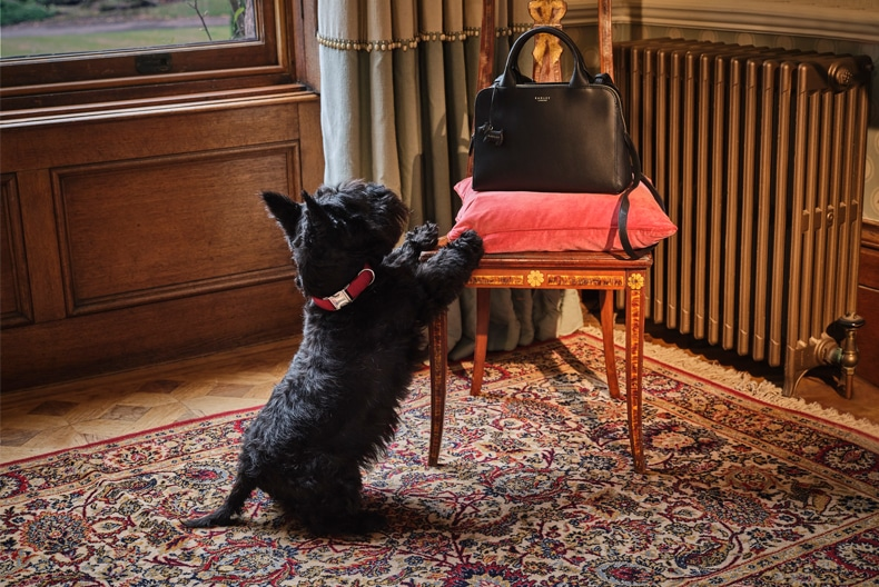 From London with Love | The Radley London Autumn collection