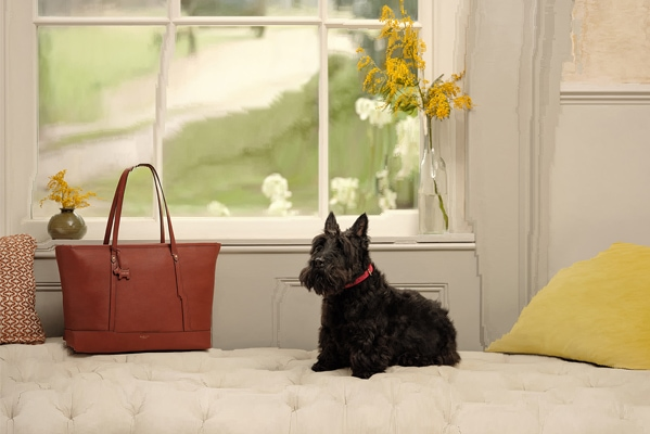 Radley Spend and Save